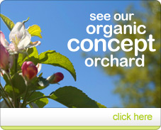 See our organic concept orchard
